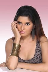 Bollywood Actress ANCHAL SINGH HOT and SEXY Photos Set-2 (14)
