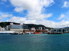 Wellington from harbour ferry