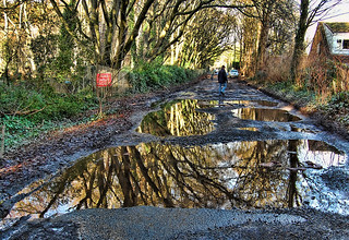 Reflections in the puddles on the back lane in...