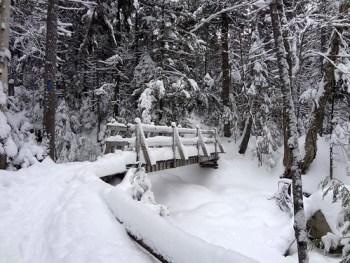 Gibbs Brook Footbridge on Mt. Pierce Crawford Connector