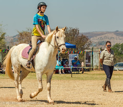 "Crossroads Equestrian Centre • <a style=""font-size:0.8em;"" href=""http://www.flickr.com/photos/67597598@N08/29135546963/"" target=""_blank"">View on Flickr</a>"