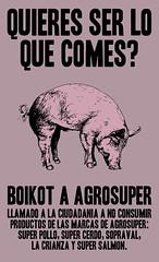 Boikot Agrosuper