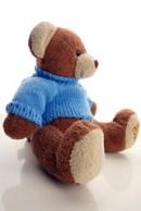 Teddy Bear Photoshoot 12