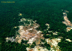 Alluvial gold mining in Guyana