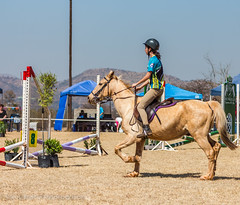 "Crossroads Equestrian Centre • <a style=""font-size:0.8em;"" href=""http://www.flickr.com/photos/67597598@N08/29724994406/"" target=""_blank"">View on Flickr</a>"