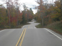 Curvaceous Road