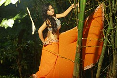South actress MADHUCHANDAPhotos Set-3-HOT IN TRADITIONAL DRESS (24)
