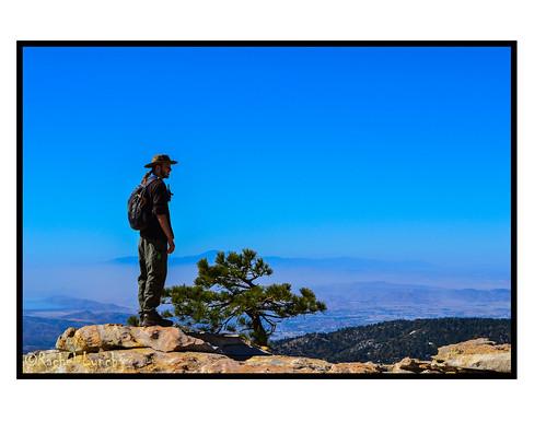 california city blue sky man tree losangeles nationalpark... (Photo: MariposaCruz (Coming Back As Time Allows!) on Flickr)