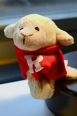 Go Rutgers!