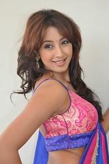 South Actress SANJJANAA PHOTOS SET-1 (14)