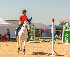 """Crossroads Equestrian Centre • <a style=""""font-size:0.8em;"""" href=""""http://www.flickr.com/photos/67597598@N08/29133426884/"""" target=""""_blank"""">View on Flickr</a>"""