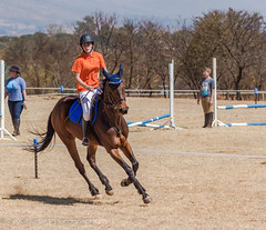 "Crossroads Equestrian Centre • <a style=""font-size:0.8em;"" href=""http://www.flickr.com/photos/67597598@N08/29678523541/"" target=""_blank"">View on Flickr</a>"