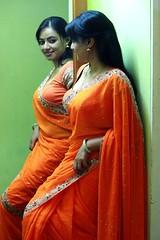 South actress Madhu Chanda Photos Set-1-Hot In Saree (1)