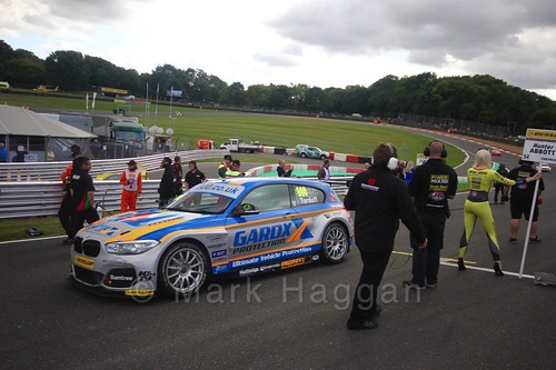 Sam Tordoff during the BTCC Brands Hatch Finale Weekend October 2016