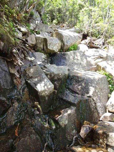 Rocky Ledge on Garfield Ridge Trail