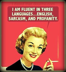 I Am Fluent In Three Languages ...item 1.. For...