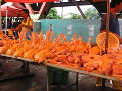 Chickens for cooking at Kuching weekend market
