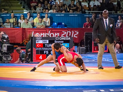 Olympic Freestyle Wrestling