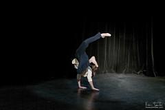 Tetra-danse___2868