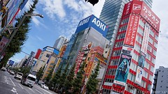 """Akihabara 13 • <a style=""""font-size:0.8em;"""" href=""""http://www.flickr.com/photos/66379360@N02/7919211856/"""" target=""""_blank"""">View on Flickr</a>"""