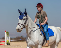 """Crossroads Equestrian Centre • <a style=""""font-size:0.8em;"""" href=""""http://www.flickr.com/photos/67597598@N08/29678636831/"""" target=""""_blank"""">View on Flickr</a>"""