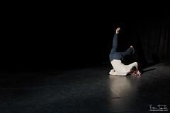 Tetra-danse__2736