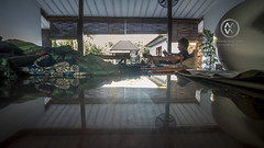 A local villa in Canggu, Bali.