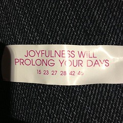 Joyfulness