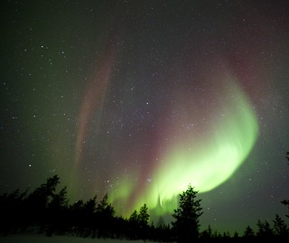 Aurora Borealis - lucky first night!