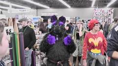 Grand Rapids Comic Con Day 2 059