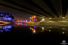 Dallas Event Photographer-9761