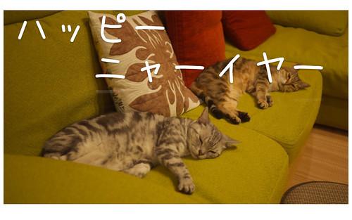 """正月 • <a style=""""font-size:0.8em;"""" href=""""http://www.flickr.com/photos/53580250@N08/16147031735/"""" target=""""_blank"""">View on Flickr</a>"""