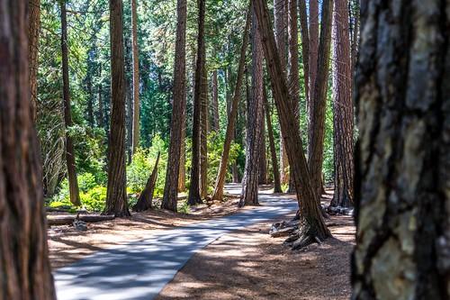Yosemite - USA