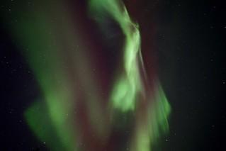 Aurora Borealis - lucky first night!