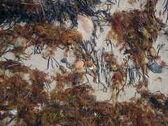 Sand Detail on Block 2