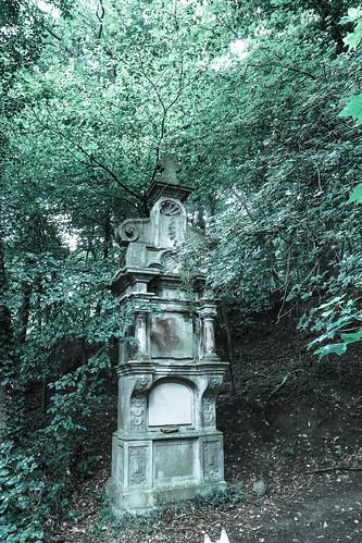 Siebengebirge-310716-10