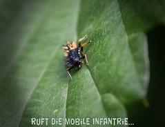 Mobile Infanterie