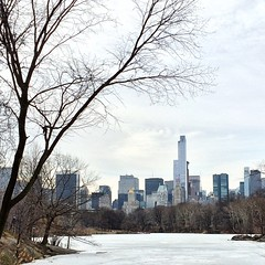 White Central Park #centralpark #newyork #usa #lake #ice