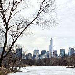 White Central Park #centralpark #newyork #usa #lake #ice