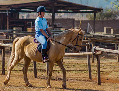 "Crossroads Equestrian Centre • <a style=""font-size:0.8em;"" href=""http://www.flickr.com/photos/67597598@N08/29469121330/"" target=""_blank"">View on Flickr</a>"