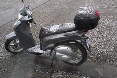 DSCF4005