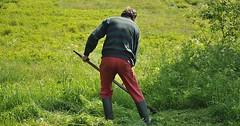 """Das Mähen. Genauer: Das Mähen mit der Sense. Der Mann mäht eine Wiese. • <a style=""""font-size:0.8em;"""" href=""""http://www.flickr.com/photos/42554185@N00/27976792434/"""" target=""""_blank"""">View on Flickr</a>"""