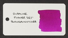 Diamine Flower Set Bougainvillea - Word Card