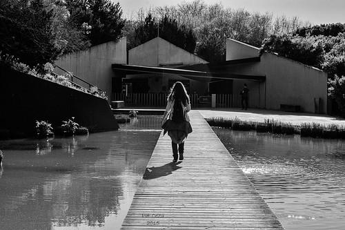 Luces e sombras - de Pat Celta
