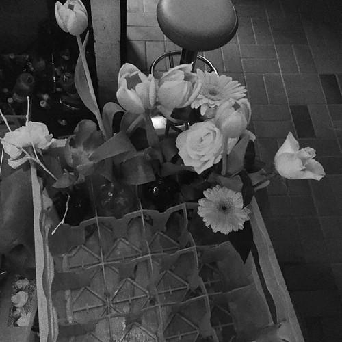 #Blumen-Kasten im #Sanchez #0711 #Stuttgart