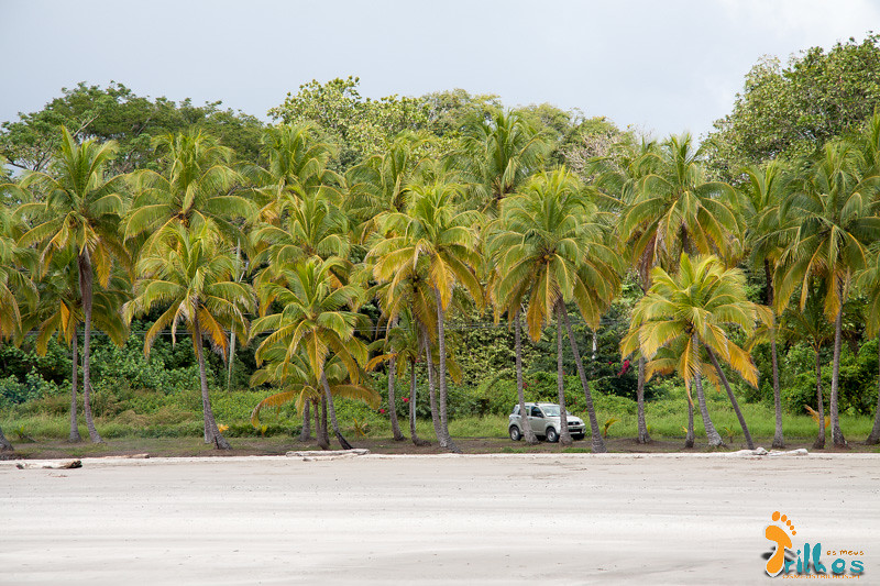 O descanso merecido na Playa de Puerto Carrillo, na Costa Rica.jpg