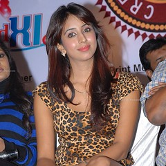 South Actress SANJJANAA Photos Set-7 (26)