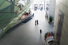 ECB Insights / EZB-Einblicke