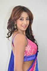 South Actress SANJJANAA PHOTOS SET-1 (19)