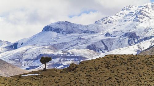 Atlas Gebirge VI